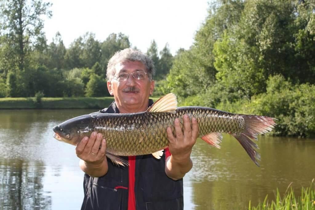 Рыбная Ловля Нижний пруд