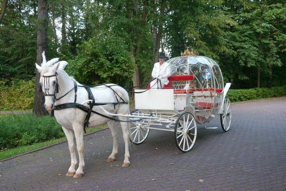 Карета для Свадьбы в Морозовке