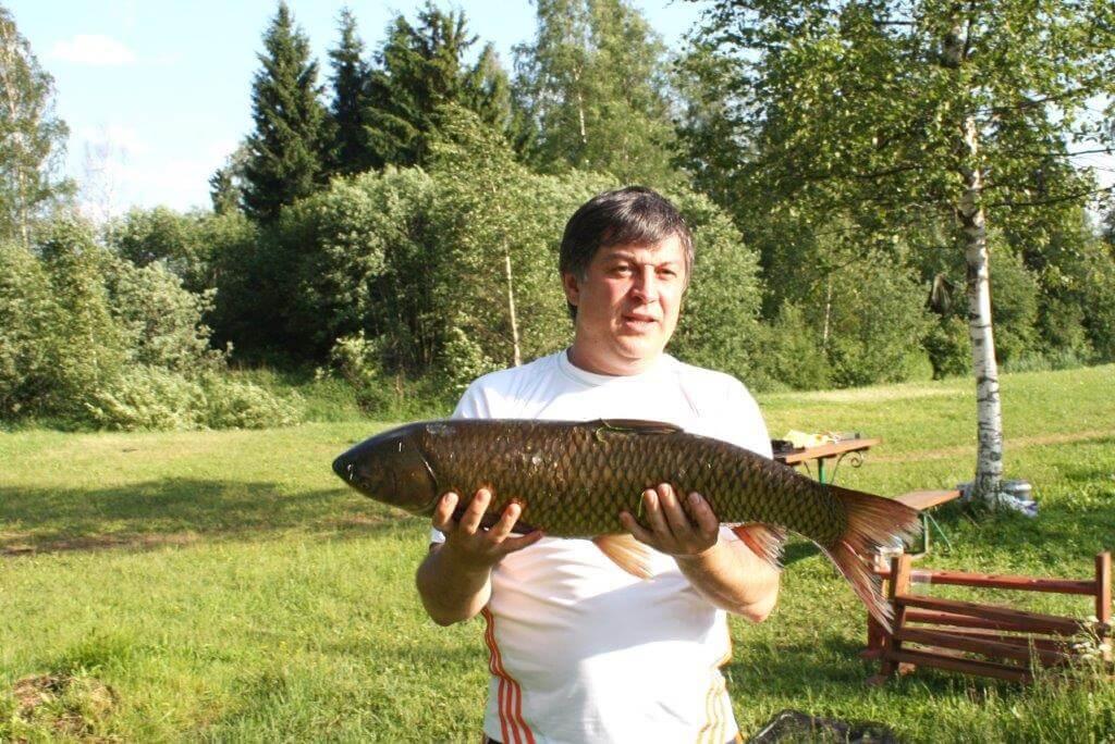 Рыбалка карповая Морозовка Газпром