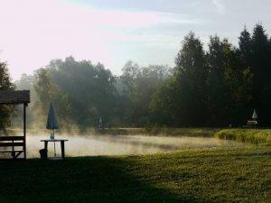 Нижний пруд утром