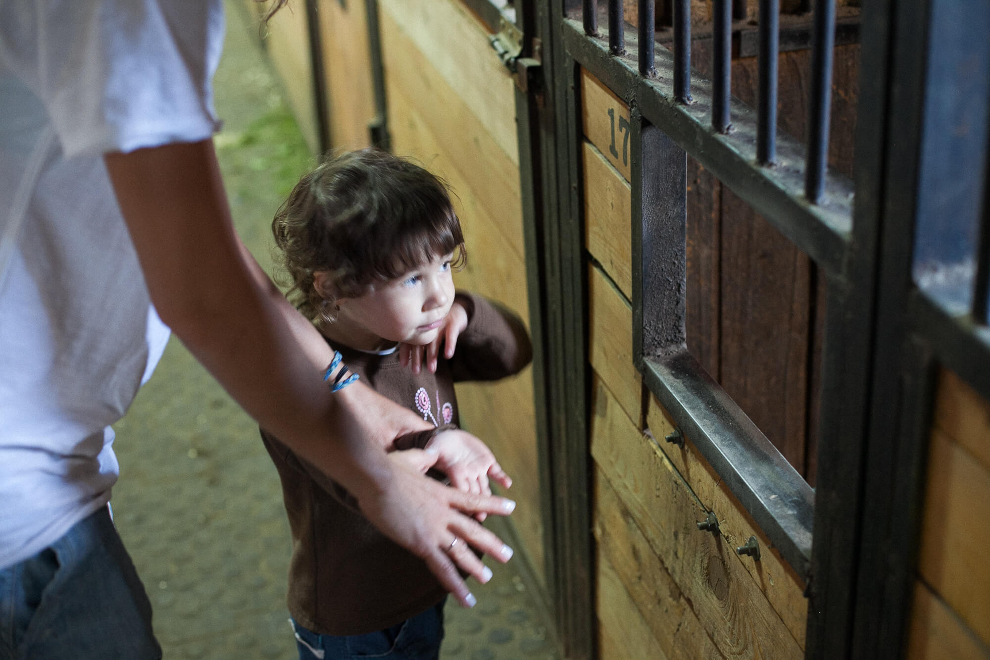 Катание на лошадях с детьми в Подмосковье