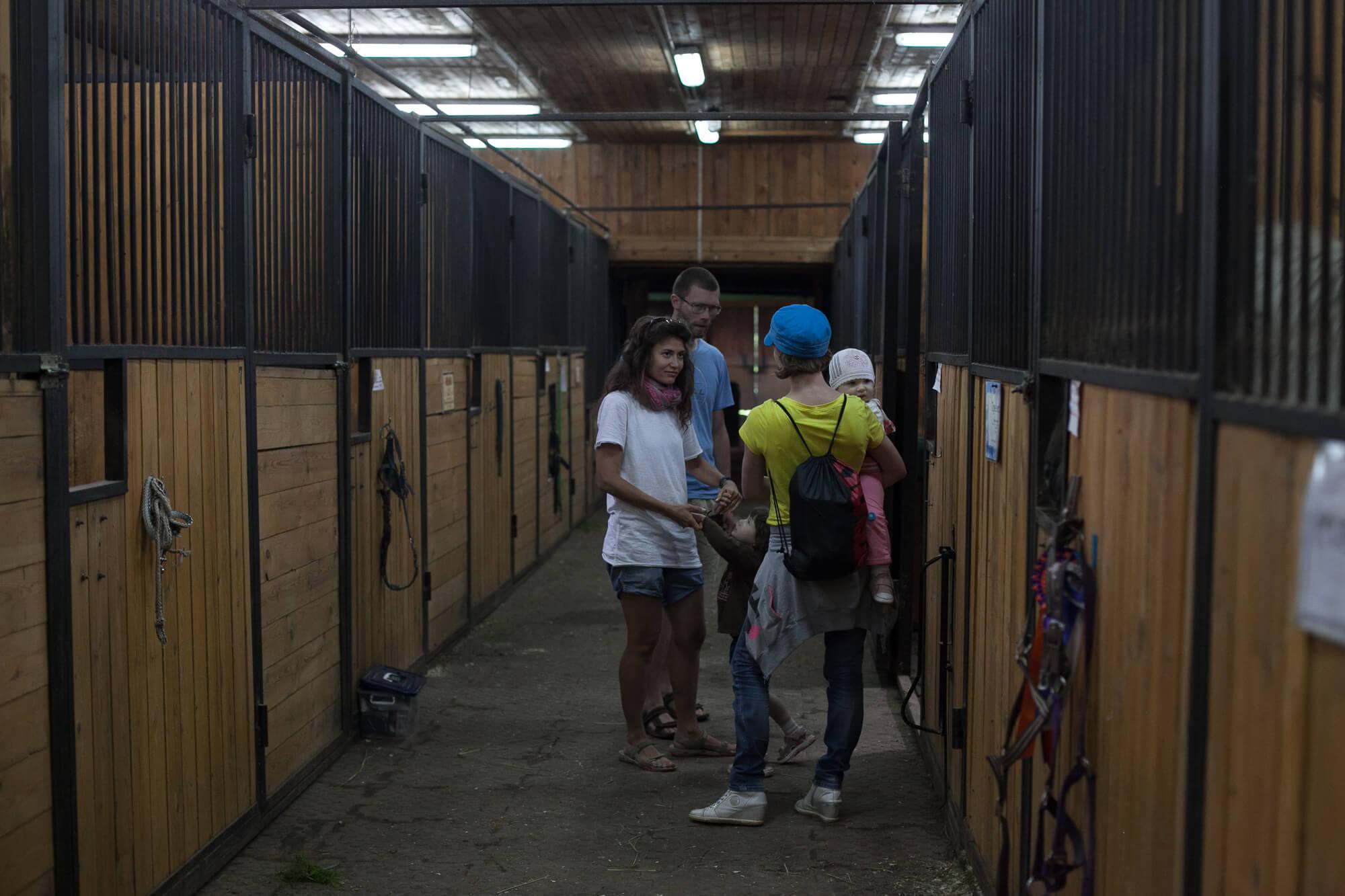 Парк Отель Морозовка - денник для лошадей