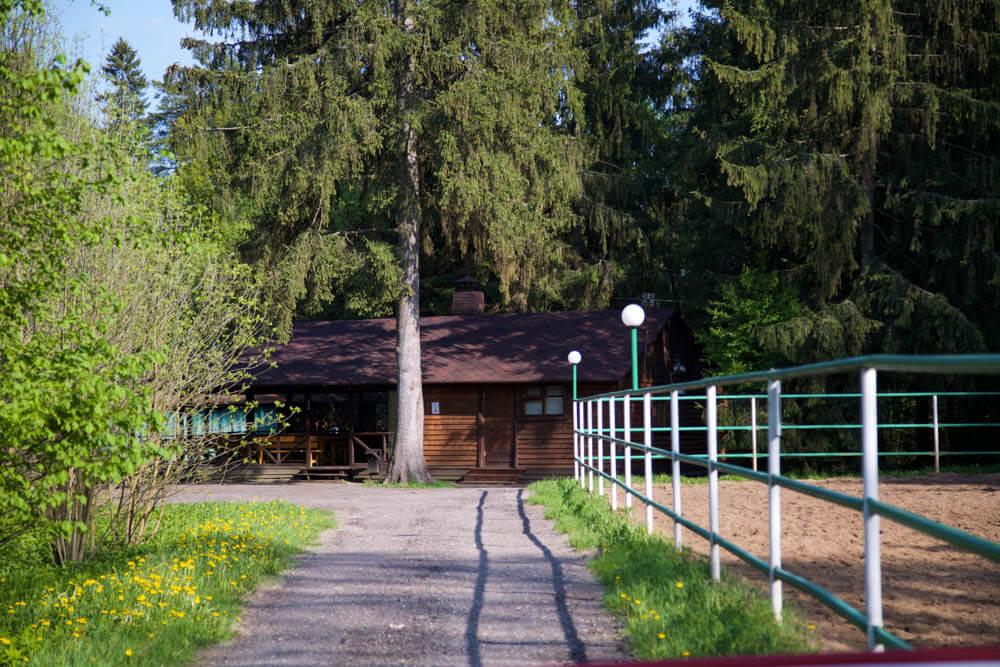 Конный манеж на территории Морозовки