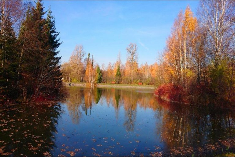 Нижний пруд осенью