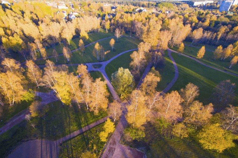 Фото парка в Морозовке сверху