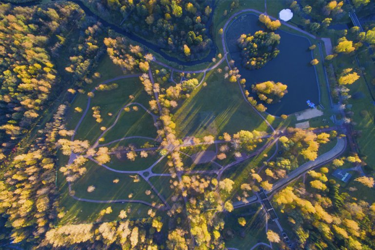 фото парка в Морозовке с высоты полета