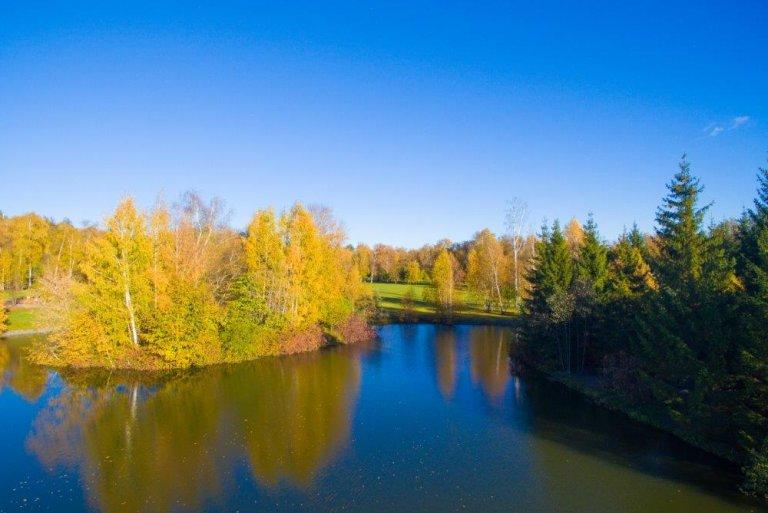 Красивый пруд в Подмосковье в Морозовке