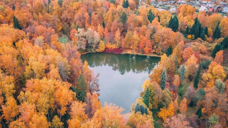 Парк отель Морозовка пруд осенью